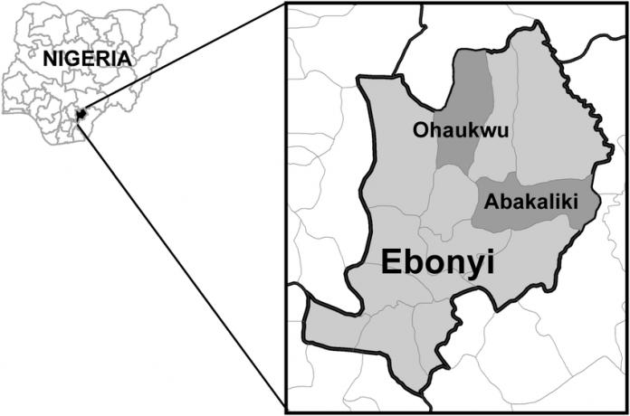 Ebonyi Local Govts Fix October To End Female Circumcision