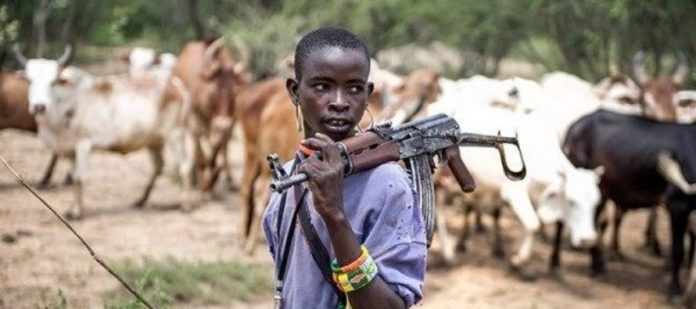 Hausa community vows to fish out killer herdsmen in Imo