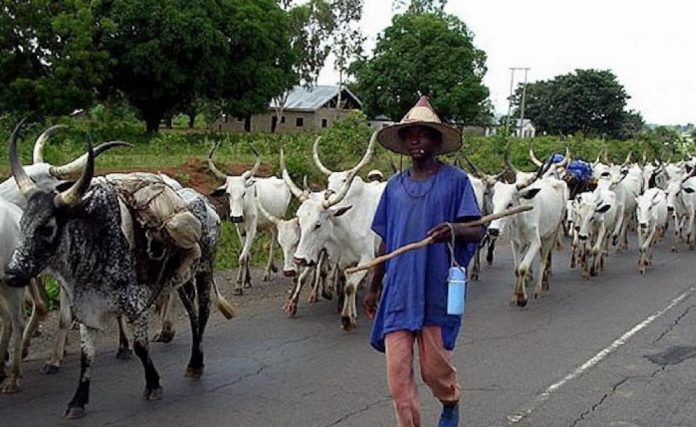 10 Herders Killed In Ebonyi In 4 Months, Says Miyetti Allah