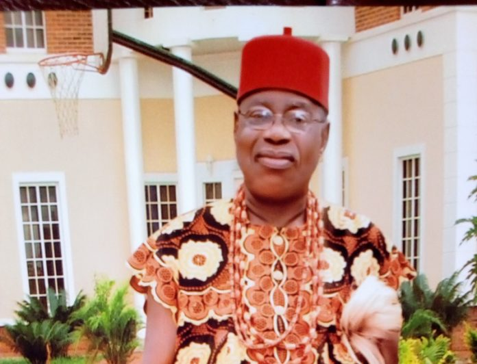 2023 - Gang up against president of Igbo extraction dangerous -Igwe Nnaji