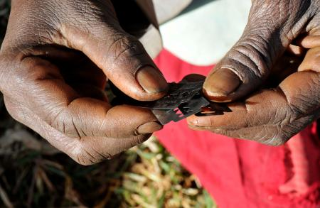UN Agencies Charge Imo Monarchs to End Female Genital Mutilation