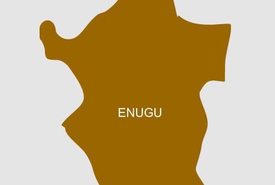 Nutrition: Enugu Govt Establishes 3 CMAM Centres