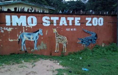 Imo Zoological Garden Staff Dirty Fight Over Funds, Animals