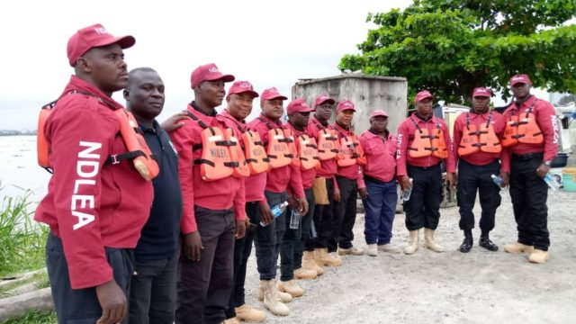 NDLEA Arrests 44 In Anambra, Seizes Two Tonnes Of Illicit Drugs