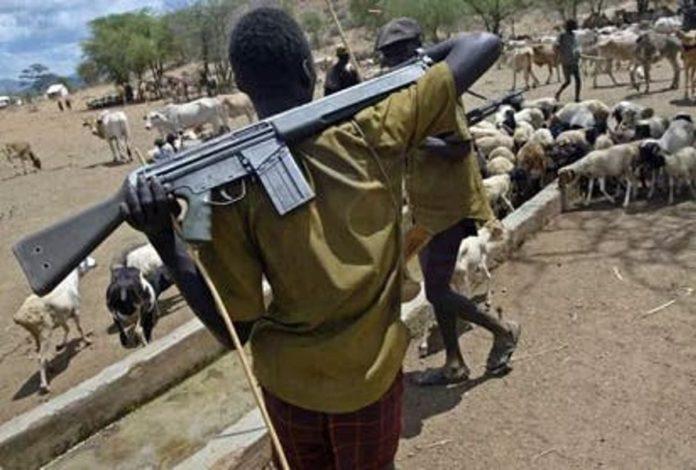 Suspected Herdsmen Kidnap Female Farmer In Delta