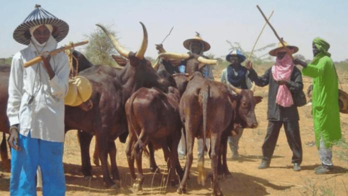 Panic In Ebonyi Over Rumored Herdsman Attack On school