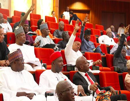 Senate To Probes Alleged Killing Of Enugu Indigenes In Togo
