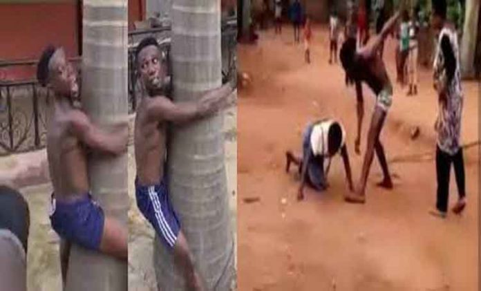 Man Flogged In Public For Beating Up His Mother (Video)