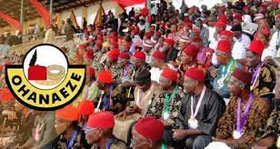 Ohanaeze Urges Ceasefire, Unconditional Release Of Detainees