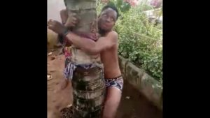 2 Gay Boys Tied, Beaten And Flogged In Okija 1