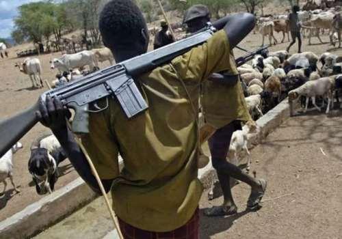 Fulani Herdmen Resurface In Delta, Sack Agrarian Community