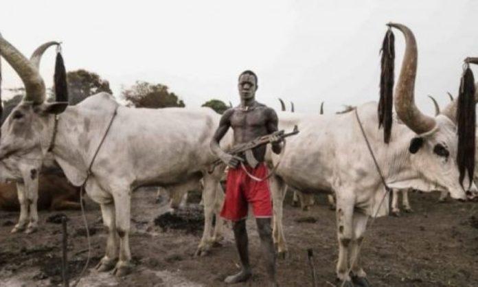 Suspected Fulani Herdsmen Attack Enugu Community,